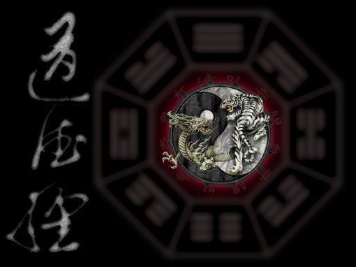 Algumas Considerações sobre o Tao  Teh  King
